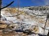 021-2005-yellowstone.jpg